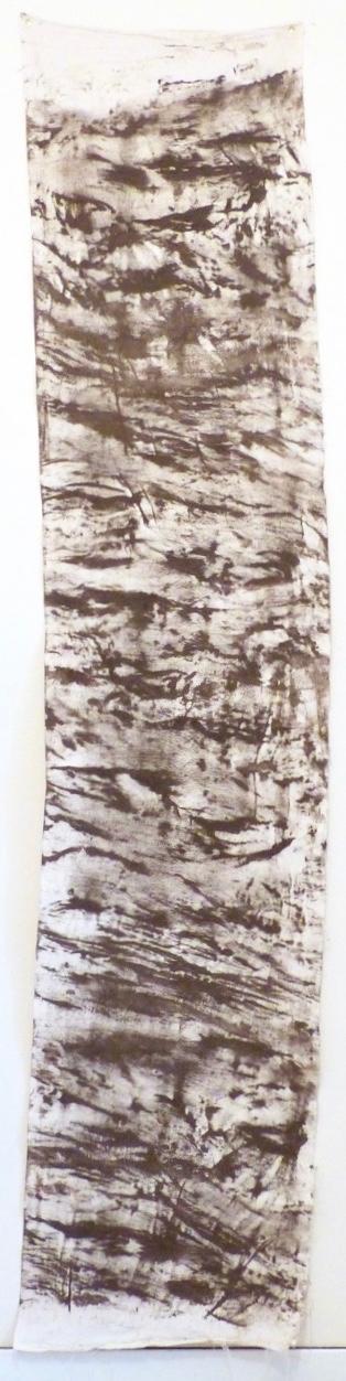 Podocarpus totara (Totara) 3