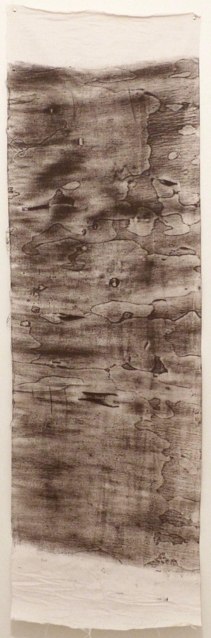 Eucalyptus subcrenulata 3