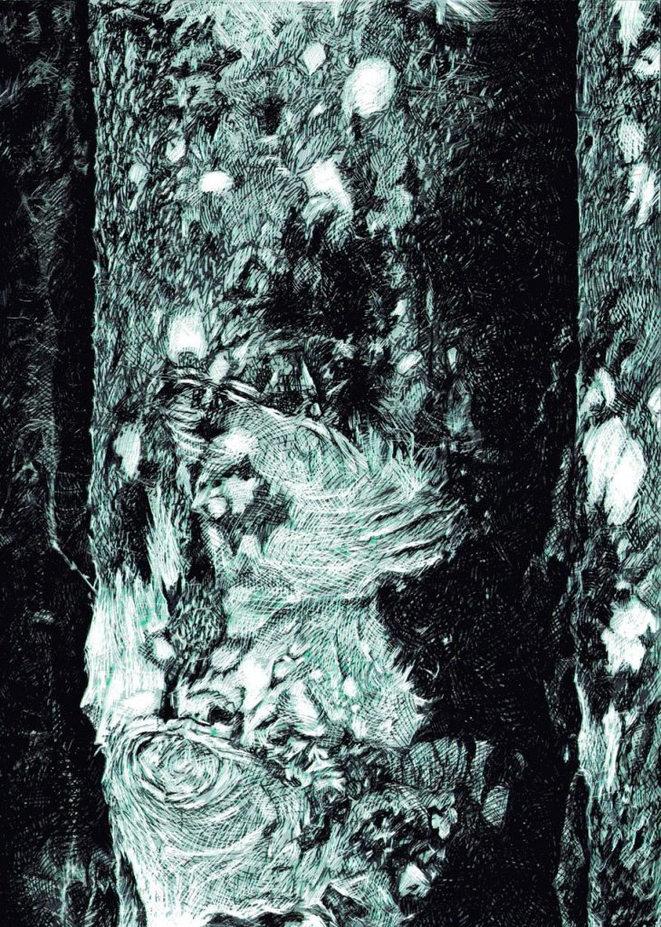 Sentinel - Simonsbath Wood